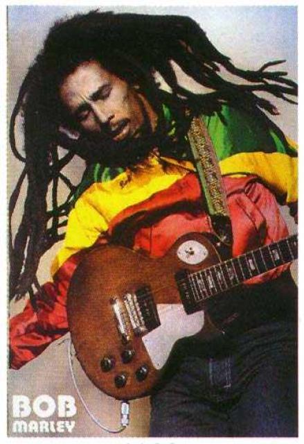 http://www.cs.hmc.edu/~rmcknigh/soc71/photos/std_Bob_Marley_poster_2.jpg